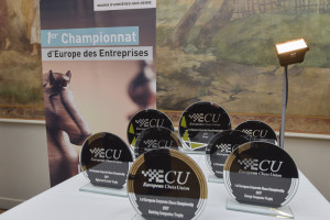 champ_europe_echecs_entreprises-®ch_perrucon_mairie_asnieres (116)